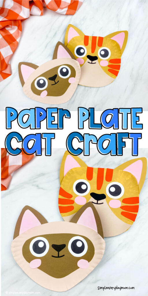 collage of paper plate cat images with the words paper plate cat craft in the middle