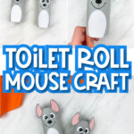 "Toilet roll mouse craft images with the words ""toilet roll mouse craft"" in the middle"