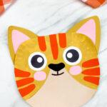 closeup of paper plate cat craft
