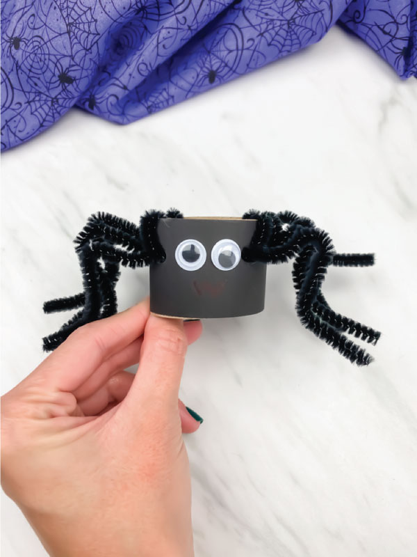 hand holding toilet paper roll pipe cleaner spider in black