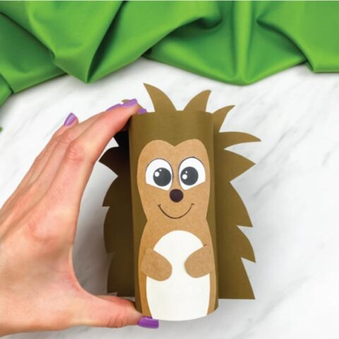hand holding toilet paper roll hedgehog craft