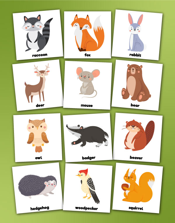 woodland animal memory game cards