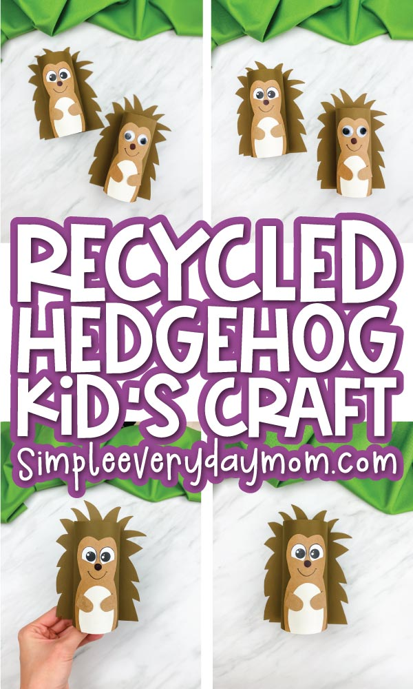 toilet paper roll hedgehog craft collage image with the words recycled hedgehog kid's craft in the middle