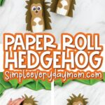 toilet paper roll hedgehog craft image collage with the words paper roll hedgehog in the middle