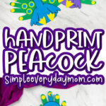 handprint peacock craft image collage with the words handprint peacock in the middle