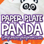 paper plate panda craft image collage with the words paper plate panda in the middle