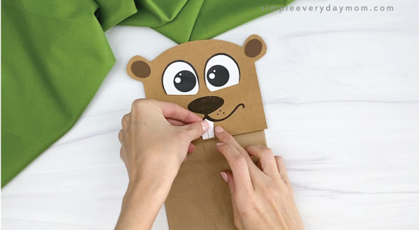 hands gluing teeth to paper bag groundhog craft