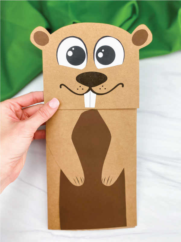 hand holding paper bag groundhog craft