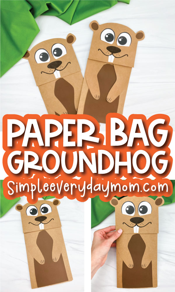 paper bag groundhog craft image collage with the words paper bag groundhog in the middle