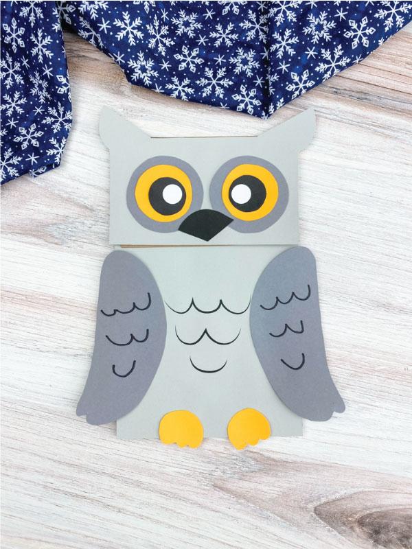 dark gray and light gray snowy owl craft
