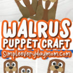 walrus paper bag craft image collage with the words walrus puppet craft in the middle