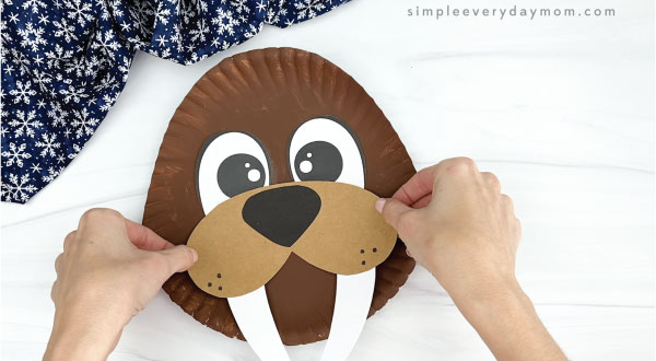 hand gluing mouth, nose, and tusks to paper plate walrus craft