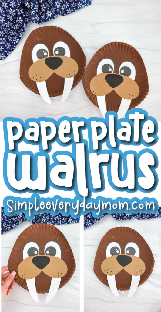 paper plate walrus craft image collage with the words paper plate walrus in the middle