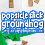 popsicle stick groundhog craft image collage with the words popsicle stick groundhog in the middle