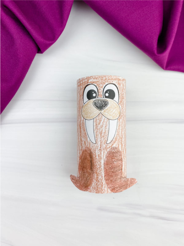 toilet paper roll walrus craft
