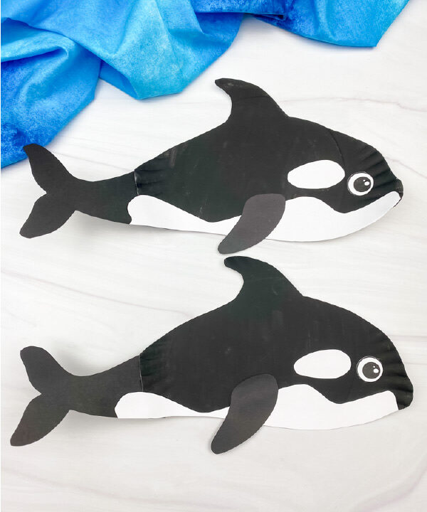 2 paper plate killer whales