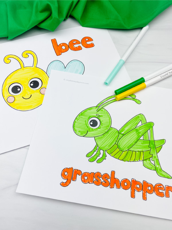 bee and grasshopper coloring pages