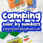 camping color by number printables image collage with the words camping color by numbers in the middle