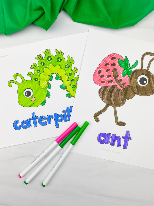 caterpillar and ant coloring pages