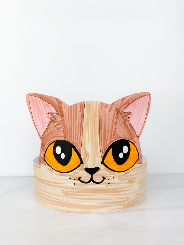 color in cat headband craft