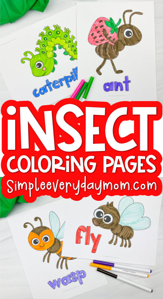 bug coloring pages for kids image with the words insect coloring pages in the middle