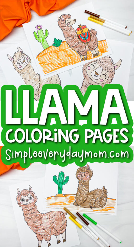 llama coloring pages image collage with the words llama coloring pages in the middle