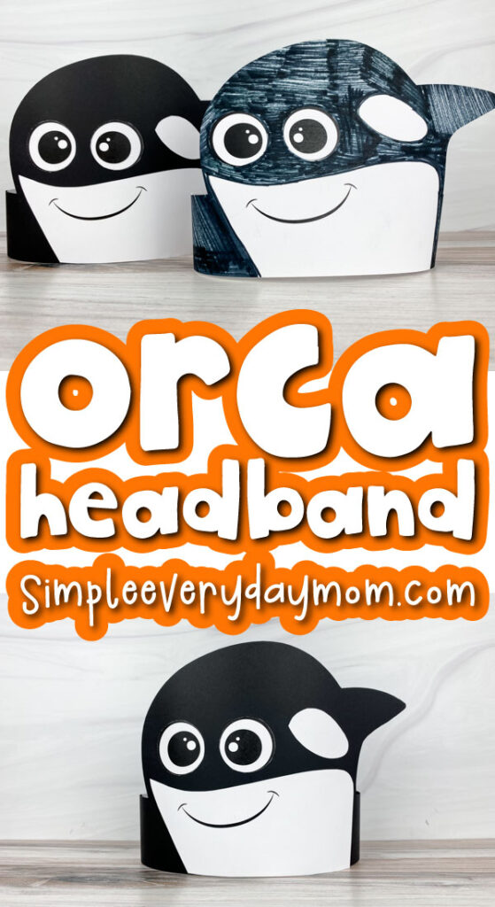 killer whale headband craft image collage with the words orca headband in the middle