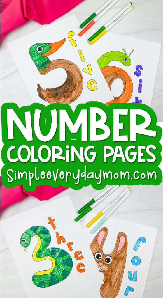 number coloring page image collage with the words number coloring pages in the middle