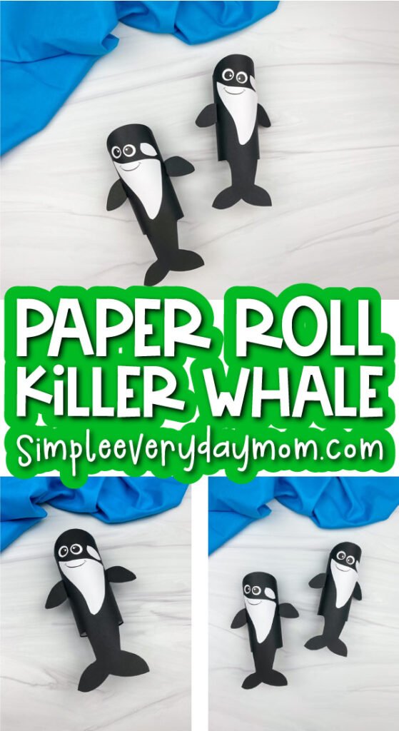 toilet paper roll killer whale craft image collage with the words paper roll killer whale in the middle