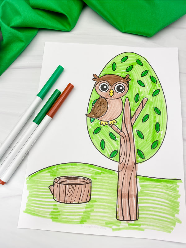 owl in tree coloring page