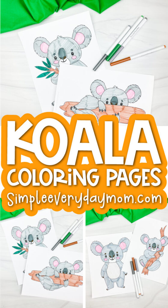 koala coloring page image collage with the words koala coloring pages in the middle
