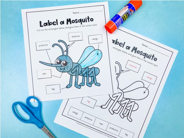 label a mosquito worksheet