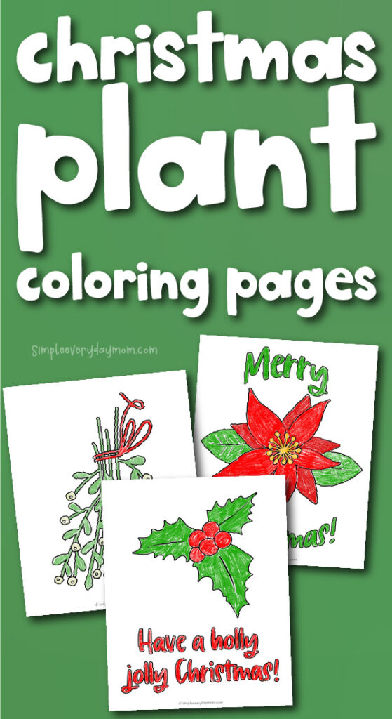 christmas plant coloring page images with the words christmas plant coloring pages on the top