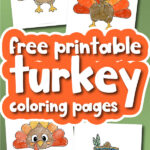 Turkey Coloring Pages For Kids [Free Printable]