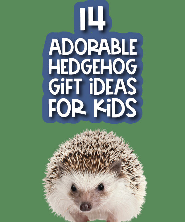 hedgehog picture with the words 14 adorable hedgehog gift ideas for kids